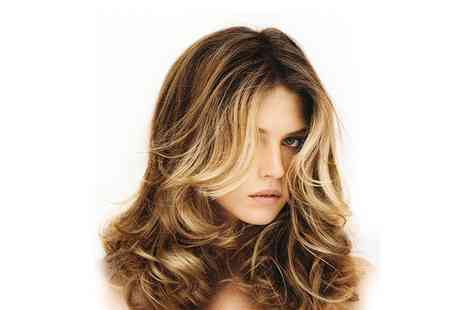 Brasil Hair - Colouring Treatment with Haircut & Blow Dry - Save 0%