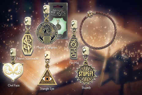 Aspire - Harry Potter Fantastic Beasts charm or charm and bracelet set - Save 45%