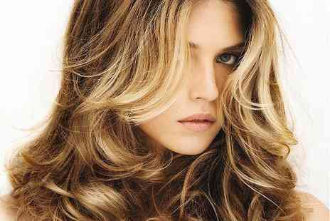 Brasil Hair - Hair Mask, Haircut & Blow Dry - Save 38%