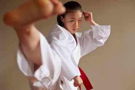 CMK Shotokan Karate - Three or Six or Self Defense Karate Classes - Save 0%