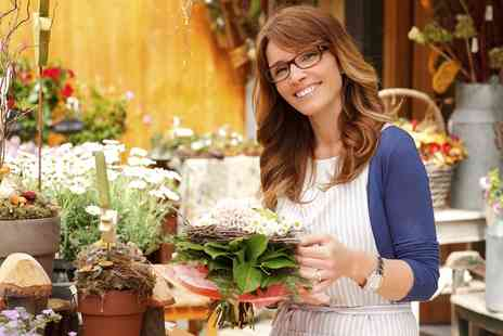 Online City Training - Online Floristry Diploma with Business Startup Training - Save 88%