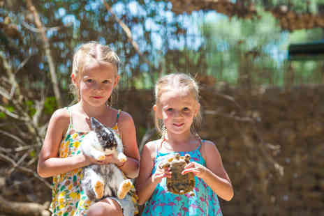 Viaduct Animal Sanctuary - Reptile or small animal experience for one person - Save 80%