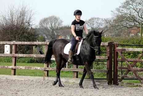 Croft Riding Centre - Introductory Horse Riding Lessons for One or Two - Save 48%