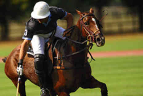 Leadenham Polo Club - 2 days of expert polo coaching - Save 60%