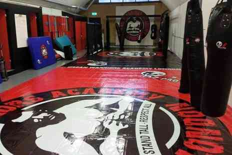 Ultra Fit Solutions - Eight kickboxing classes in Vauxhall - Save 62%