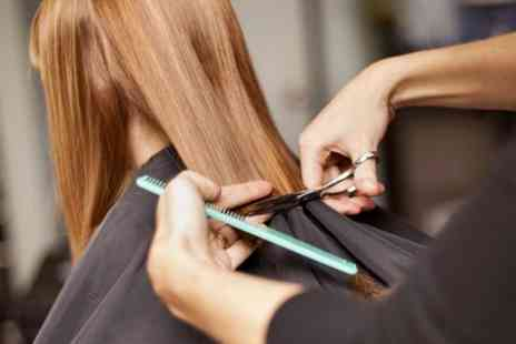 Quattro Lounge - Wash, Cut and Blow Dry or Cut, Finish, Conditioning Treatment and Ombre or Balayage - Save 53%
