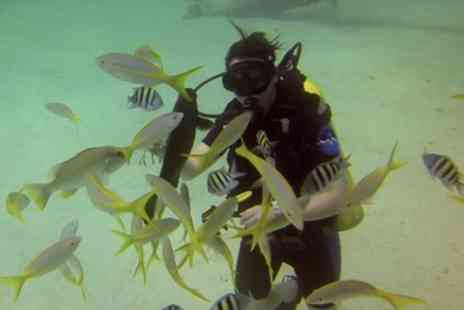 Vivian Dive Quarry - Discover Scuba Diving Session for One or Two - Save 56%