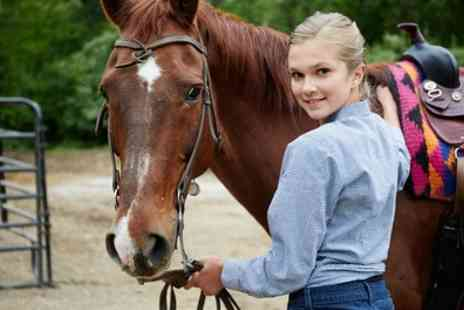 The Freedom Centre - 40 Minute Private Horse Riding Lessons - Save 58%