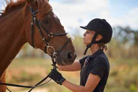 The Freedom Centre - 60 Minute Pony Play Session or up to Four Group Riding Lessons - Save 40%