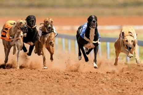GRA Ltd - Greyhound Racing with Racecard, Burger and Drink for up to Eight  - Save 68%