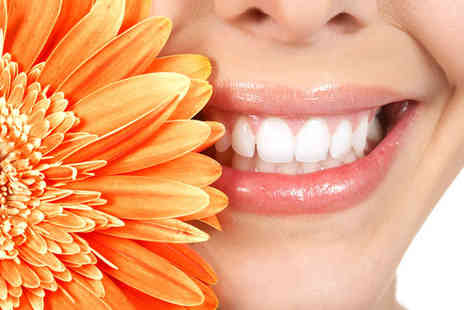 Express Teeth Whitening - One hour laser teeth whitening session and touch up pen - Save 75%
