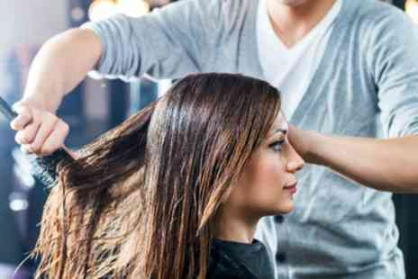 Elite Hair & Beauty - Wash, Cut and Blow Dry with T-Section or Full Head Colour - Save 51%