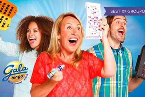 Gala Bingo - Main Session Bingo with Chips for Two, Four or Eight - Save 79%