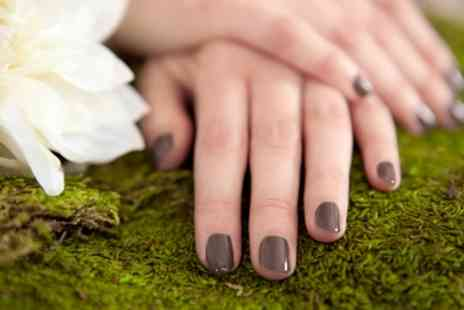 The Palace - Shellac Manicure or Pedicure or Both - Save 40%