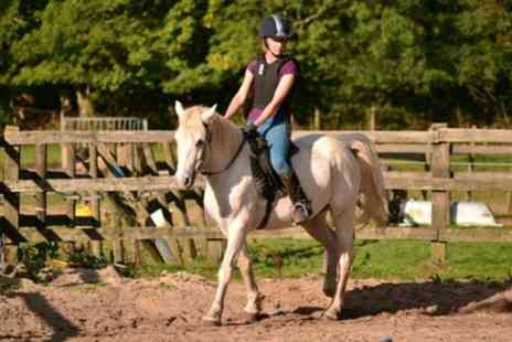Kingsmead Equestrian Centre - 45 Minute Escorted Horse Ride for Up to Six - Save 20%