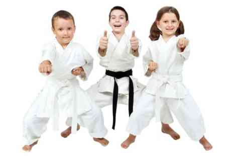 Omni Martial Arts - Five or Ten Little Dragons or Junior Warriors Martial Arts Classes - Save 0%