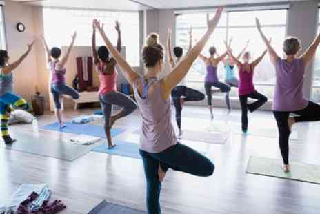 Free Soul Yoga - Five or Ten Yoga Classes - Save 0%