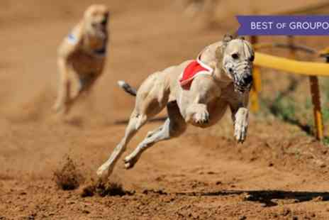 Swindon Greyhounds - Greyhound Race Entry with Race Card, Burger and Drink for Two - Save 73%