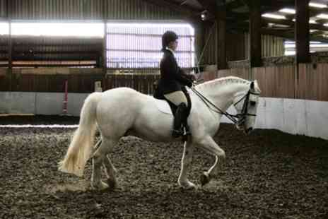Tannoch Stables - 90 Minute Indoor Horse Riding Lesson - Save 57%