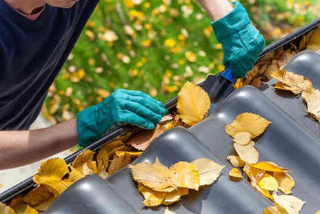 Pro Cleaning Services - Gutter cleaning - Save 68%