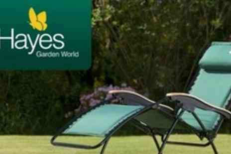 Hayes Garden World - Padded Sunlounger - Save 51%