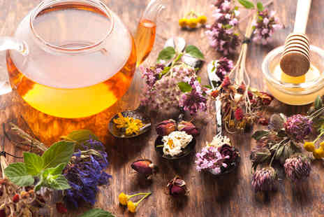 NLP Centre of Excellence - Discover Advanced Herbalism Course - Save 80%