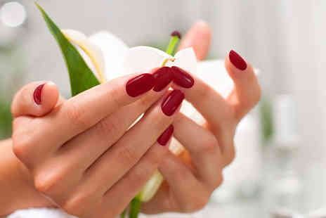 Nicky Salon - Shellac manicure or pedicure or both - Save 53%