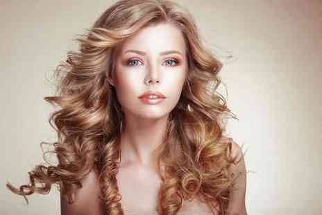 The Style Hut - Half head of highlights, haircut and blowdry - Save 71%
