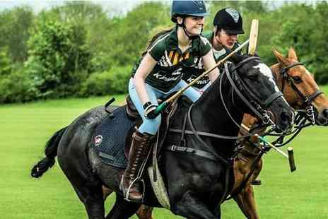 Leadenham Polo Club - One hour group polo lesson or private lesson - Save 29%