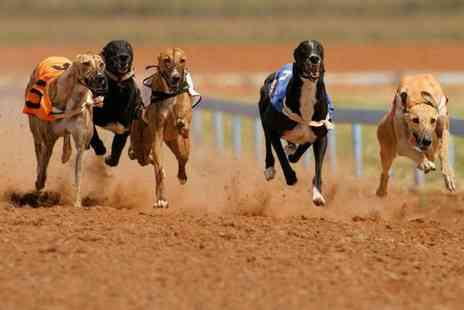 Drumbo Park - Greyhound racing entry for two people with a burger and drink each - Save 0%