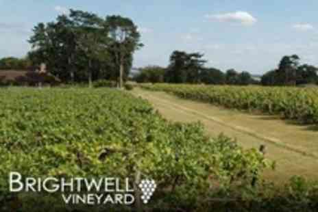 Brightwell Vineyard - Wine Tasting and Vineyard Tour For Four - Save 53%