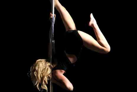 Pole Sessions - Up to 12 One Hour Pole Dancing or Aerial Classes for One or Two - Save 38%
