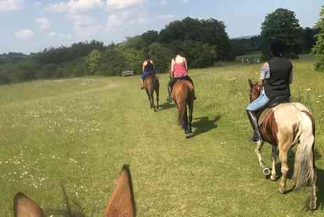 Saddles Riding Centre - One Hour Horse Riding Hack for Two or Three - Save 21%