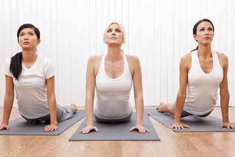 Yoga Ananda Holistic Centre - Five Yoga Classes for One or Two People - Save 81%