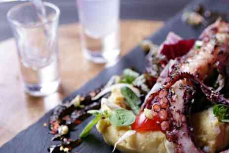 The Life Goddess - Two or Three Course Greek Lunch with Wine for One or Two - Save 66%