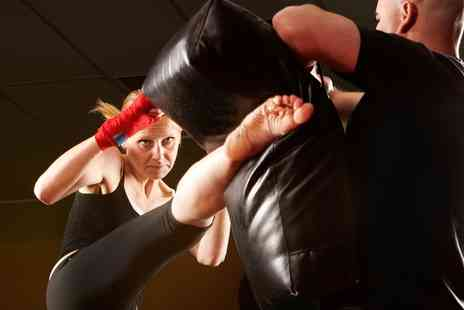 Ultra Fit Solutions - Three or Eight Kickboxing Sessions for Adults or Children - Save 80%