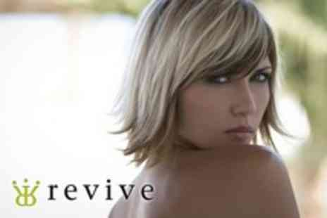 Revive - Highlights or Colour With Cut and Condition - Save 73%