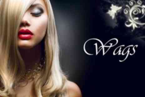 Wags Hair - Full Head Highlights With Cut and Blow Dry Plus Conditioning Treatment - Save 60%