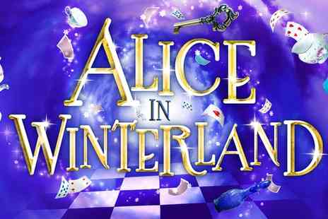 Rose Theatre Kingston - One ticket to Alice in Winterland on 7 To 14 December