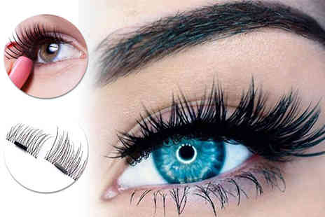Alvis Fashion - Four magnetic eyelash extensions - Save 90%