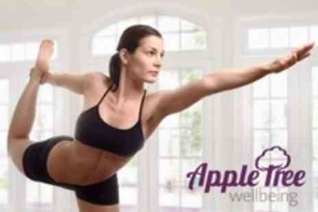Apple Tree Wellbeing - Six Pilates Sessions - Save 63%