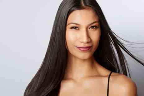 Renner Menezzes Brazilian Hair Stylist - Brazilian Blow Dry with Optional Cut - Save 65%