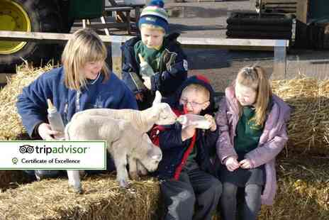 Stockley Farm Park - Entry for two adults and two children to Stockley Farm Park - Save 34%