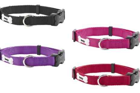 Groupon Goods Global GmbH - Bunty Middlewood Nylon Dog Collar or Lead - Save 60%