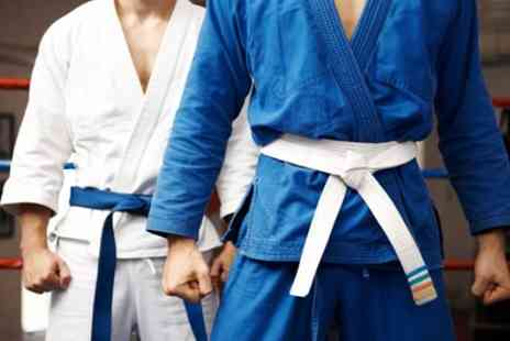 Wckd Institute - Five or Ten Two Hour Karate Classes - Save 0%