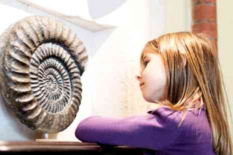 Fossils Galore - Entry with Three Activities and Admission to Dinosaur Exhibition for Up to Three Kids - Save 0%