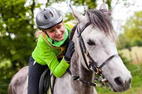 Equine Learning - Two hour horse trail ride with a picnic - Save 48%