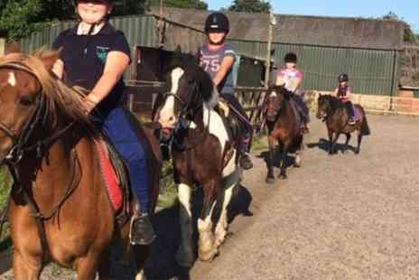 Croft Riding Centre - Introductory One Hour Horse Riding Lesson for One or Two - Save 48%