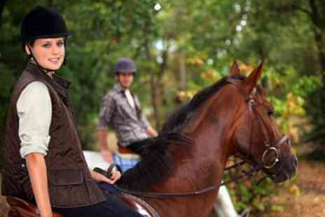 Seafields Riding School - 30 or 60 Minute Horse Riding Lesson for Two - Save 40%