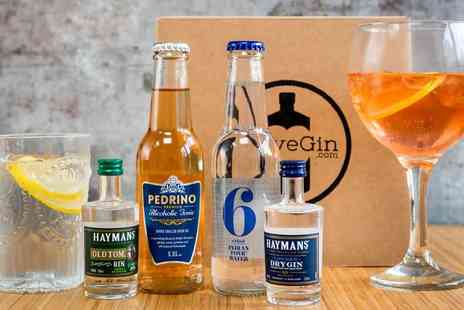 I Love Gin - Gin box with two 50ml gins, two 200ml mixers, a serving guide, and a £5 voucher to spend towards a full size bottle of gin - Save 36%